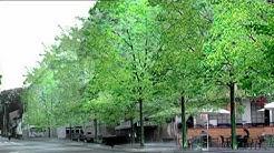 Gossau - die Stadt im Grünen