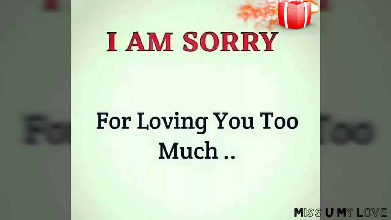 I Am Sorry Special Whatsapp Status Must Watch Miss U My Love