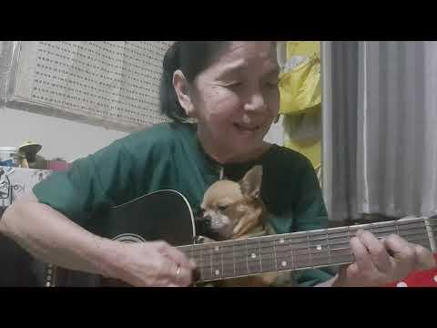 You are my sunshine (cat singing dog sleeping)