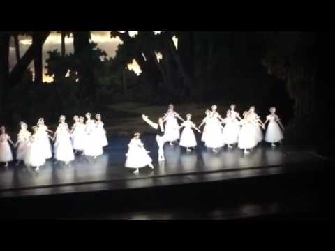 Chopiniana Wiener Staatsoper applausi