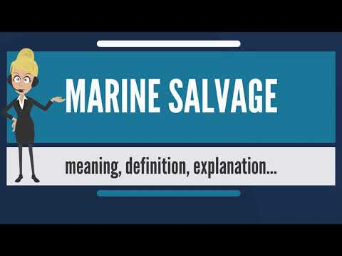 What is MARINE SALVAGE? What does MARINE SALVAGE mean? MARINE SALVAGE meaning & explanation