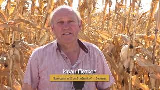 Първи резултати от жътва царевица 2019, Орфеус ФАО 360