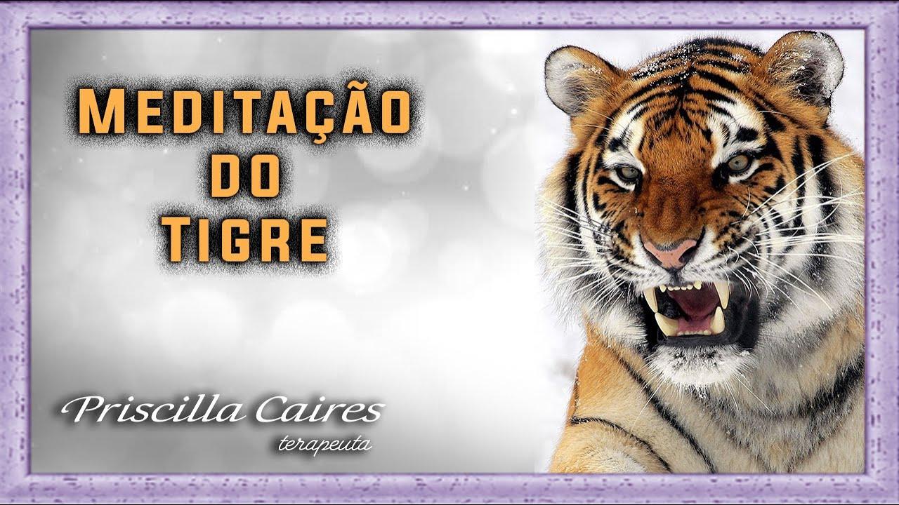 Meditacao do Tigre