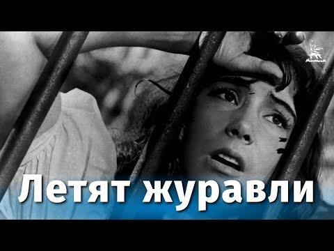 Песня журавли из фильма летят журавли