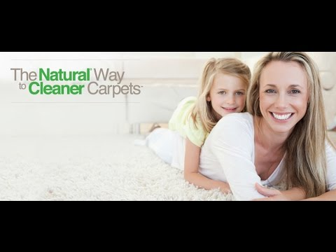 Tampa Fl Carpet Cleaning & All Care Services (Installation & Repairs), 813 944 8004