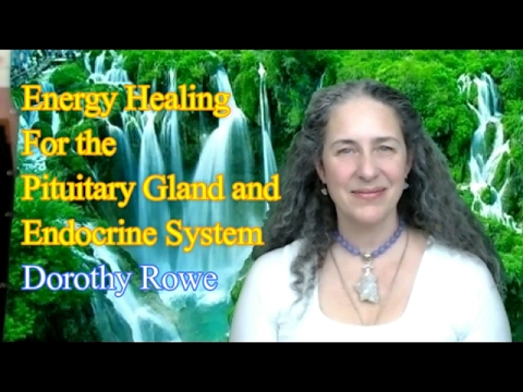 Energy Healing For The Endocrine System By Dorothy Rowe