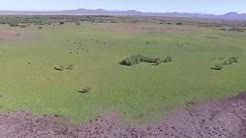 Picacho Reservoir Eloy Az.