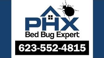 Scottsdale Bed Bug Treatment - 623-552-4815 | Bed Bug Exterminator