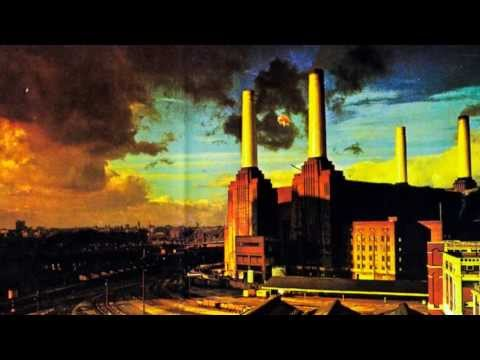 Pink Floyd  Pigs Three Different Ones
