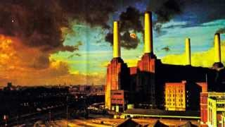 Скачать Pink Floyd Pigs Three Different Ones