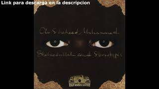 Download Descargar Album Ali Shaheed Muhammad-(2004)- Shaheedullah and Stereotypes Completo