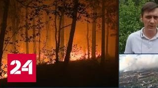 В лесах Красноярского края из-за пожаров введен режим ЧС