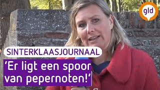Het Elburgse Sinterklaasjournaal 15 november 2018