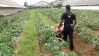 รถพรวนดิน กำจัดวัชพืชร่องมัน (093) 359 0908