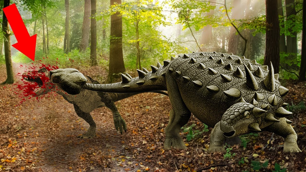 10 Largest Herbivorous Dinosaurs That Ever Lived Youtube
