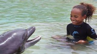 Dip 'N Discover at Dolphin Cay Atlantis