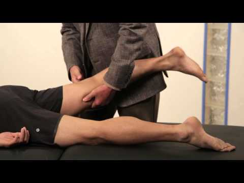 726.56kb) free femoral nerve stretch test youtube mp3 – leukasoft mp3, Muscles