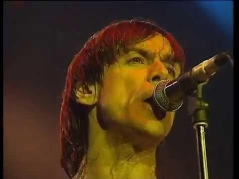 Iggy Pop - I wanna be your dog (Olympia)