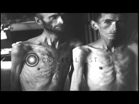 Four naked, emaciated prisoners with numbers tattooed on their chests at the conc...HD Stock Footage