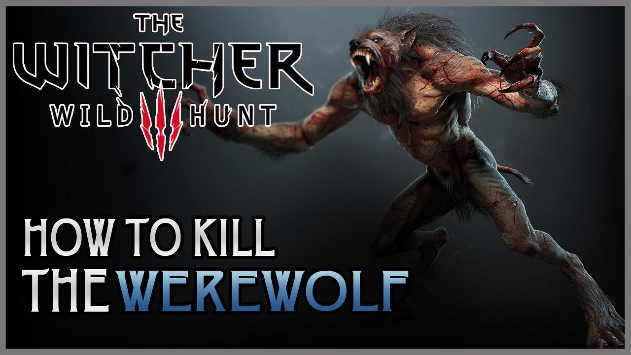 witcher 3 how to kill werewolf