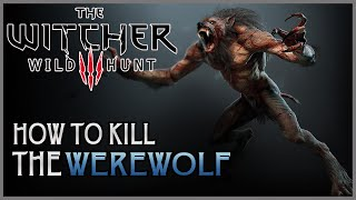 The Witcher 3 Wild Hunt - How To EASILY Kill a Werewolf (The Witcher 3 HD PS4 Gameplay)