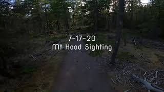 Bigfoot Sighting in Oregon July 17th 2020 by Mt Hood