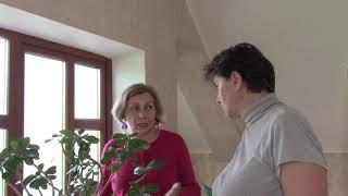 Адениум  -  роза пустыни. Растение не требующее особого ухода!