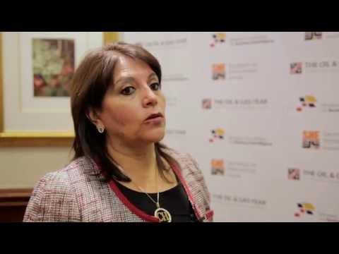 TOGY Ecuador 2014 Secretary of Hydrocarbons