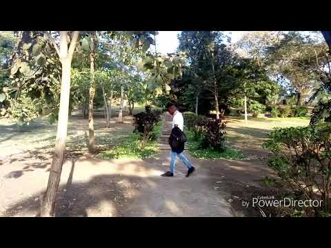 Chin Bees Kababaye official dance video by Qish the Kidd