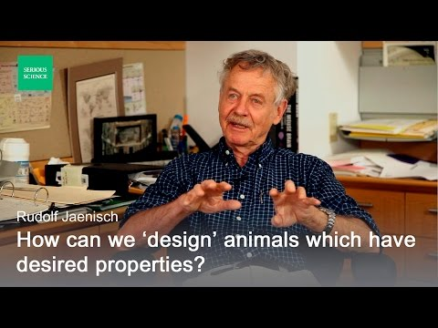 Genetic Manipulation in Stem Cells - Rudolf Jaenisch