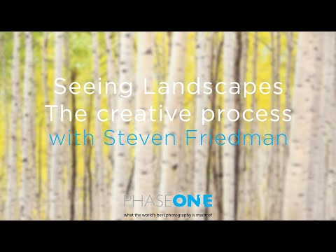 Education I Seeing Landscapes - The creative process with Steven Friedman | Phase One