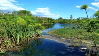 Gianmaria Testa - Piccoli fiumi