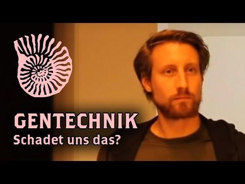 Martin Moder: Ist das noch Gentechnik? - YouTube