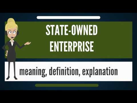 What is STATE-OWNED ENTERPRISE? What does STATE-OWNED ENTERP