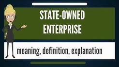 What is STATE-OWNED ENTERPRISE? What does STATE-OWNED ENTERPRISE mean?
