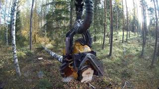 Video Hyvää harvennusta pitkä video. Ponsse scorpion king h7 download MP3, 3GP, MP4, WEBM, AVI, FLV Oktober 2018