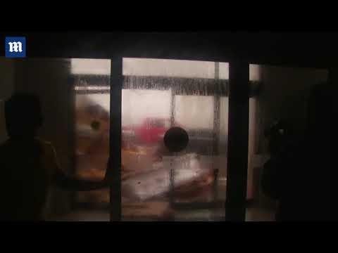 Debris goes flying as Hurricane Michael makes landfall in Florida