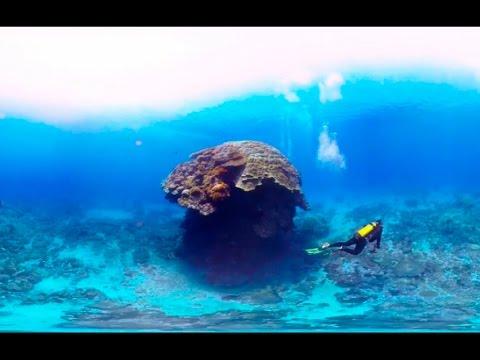Scuba Diving Short Film in 360° Green Island, Taiwan ( 綠島, 台灣) <stro data-recalc-dims=