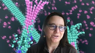 How do severing enzymes strengthen and amplify microtubules?
