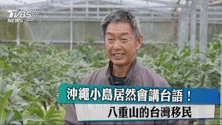 沖繩小島居然會講台語! 八重山的台灣移民