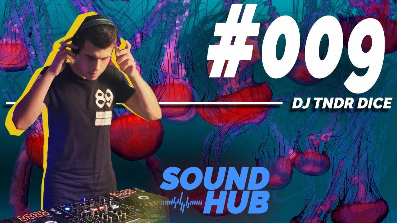 Download SOUND HUB MIX #009 - DJ TNDR DICE