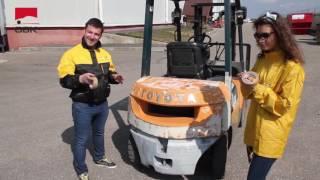видео Кракски Motip