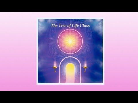 Mother Akasha and The Tree of Life Teachings Vol 8