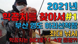 학꽁치를 찾아서#1 부산 영도 좌대낚시, 학꽁치 실종&…