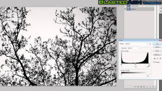 Photoshop Tutorials: Advanced channel masking [Masking complex objects]