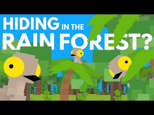 What's Hiding Deep Within The Rainforest?