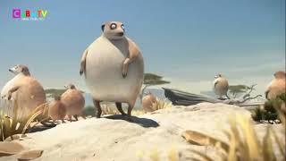 Động vật béo phì- phim hoạnt hìh vui nhộn p1
