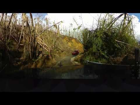 Hurricane Maria aftermath: Puerto Rico rainforest destroyed (360 video)