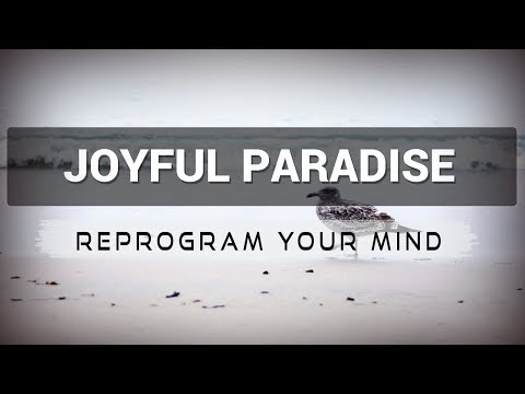 Joyful Paradise affirmations mp3 music audio - Law of attraction - Hypnosis - Subliminal