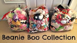 HUGE Beanie Boo Collection!